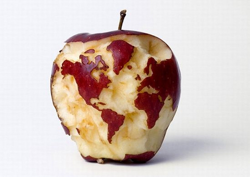 world map carved on apple