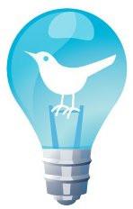 bird in bulb