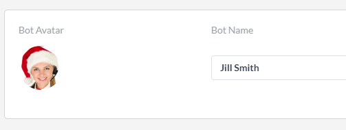 bot avatar and name